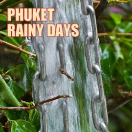 Phuket in the Rain – What to do on a rainy day in Phuket